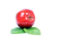 Organic apple Stock Photos
