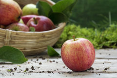 Organic apple and a blurred basket with apples on a wooden deck Royalty Free Stock Photography
