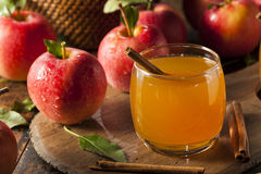 Organic Apple Cider with Cinnamon Royalty Free Stock Images