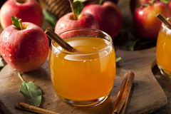 Organic Apple Cider with Cinnamon Stock Image