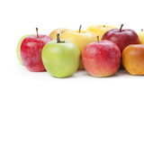 Organic apple fruit. Various colors ripe apples Royalty Free Stock Images
