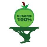 Organic apple on a tray illustration Royalty Free Stock Photo