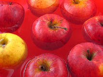 Organic Apples. In the water Stock Images