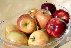 Organic apples Royalty Free Stock Photos