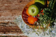 Organic apples in basket in summer grass. Fresh apples in nature royalty free stock images