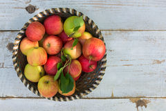 Organic apples in basket, on white vintage wooden background Stock Photography