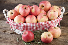 Organic Apples Stock Photo