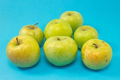 Organic apples isolated on blue background stock photos