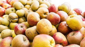 Organic apples in Paris market Royalty Free Stock Images