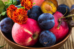 Organic apples and plums on a wooden table Stock Photo