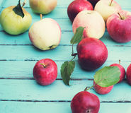 Organic apples on rustic wooden background selective focus. Fres. H red yellow and green apples with leaves on wooden table Royalty Free Stock Photo