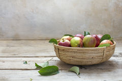 Organic apples in a small basket on an rustic wooden table Royalty Free Stock Photography