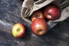 Organic Apples on Wood Royalty Free Stock Images