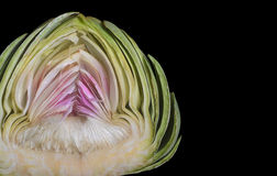 Organic Artichoke Royalty Free Stock Images