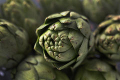Organic Artichokes Royalty Free Stock Image