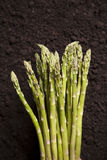 Organic Asparagus Cluster Stock Photos