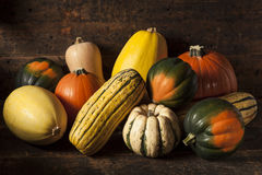 Organic Assorted Autumn Squash Royalty Free Stock Images