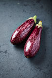 Organic Aubergine Royalty Free Stock Photography