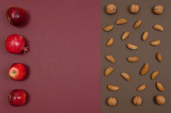 Organic autumn fruits and nuts setting isolated on split backgro Royalty Free Stock Images