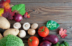 Organic autumn groceries Stock Images