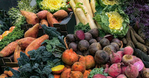 Organic autumnal vegetables roots at a food market. Display of organic autumnal vegetables roots at a food market stock photo