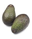 Organic Avocado Stock Image