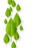 Organic background Stock Images
