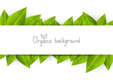 Organic background Royalty Free Stock Images