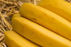 Organic bananas, latin – musa. Banana fruits on natural straw background Royalty Free Stock Photography