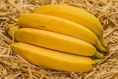 Organic bananas, latin – musa. Banana fruits on natural straw background Royalty Free Stock Photos