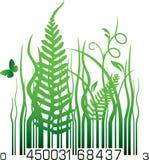Organic barcode Stock Image