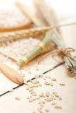 Organic barley grains Royalty Free Stock Photography