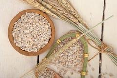 Organic barley grains Stock Photo