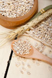 Organic barley grains. Over rustic wood table macro closeup Royalty Free Stock Photography