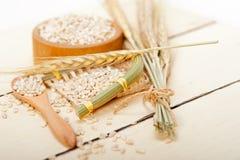 Organic barley grains Royalty Free Stock Photos