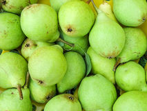 Organic bartlett (williams) pears Stock Photos