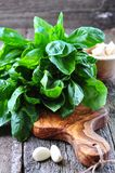 Organic basil on the board of olives with parmesan and garlic Royalty Free Stock Photography