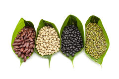 Organic beans Royalty Free Stock Images