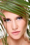 Organic beauty Royalty Free Stock Photography