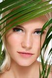 Organic beauty Stock Image