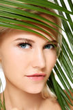 Organic beauty Royalty Free Stock Images