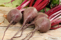 Organic beetroot Royalty Free Stock Photography