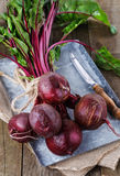Organic beetroot over rustic wooden background Stock Images
