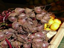 Organic Beetroots for sell in the market stock image
