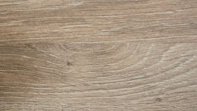 Organic beige brown oak wood texture Royalty Free Stock Photos