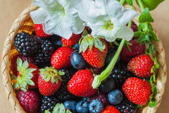 Organic berries with its own rustic garden in a wicker bowl, top view. Decorated with flower, blueberries, strawberries, raspberries and blackberries. Healthy Stock Photo