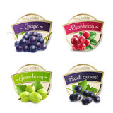 Organic Berries Labels Collection Stock Image