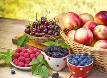 Organic berry fruits - berries royalty free stock photo