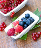 Organic berry fruits - strong antioxidants Stock Images
