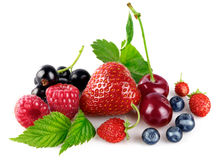 Organic berry fruity mix with green leaf Royalty Free Stock Photo